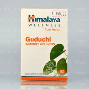himalaya-guduchi_5