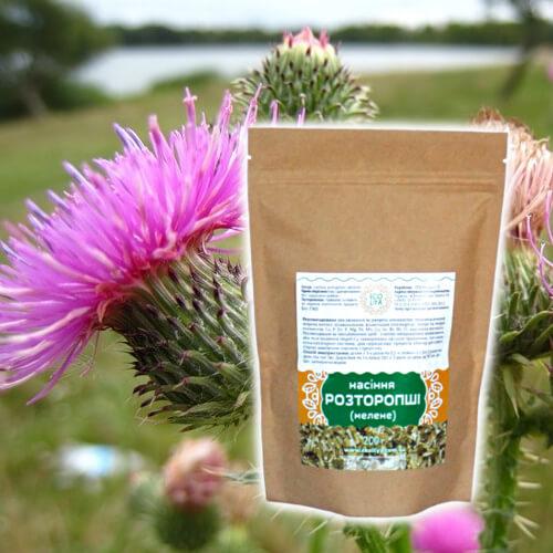 Молотые семена расторопши – восстановление печени